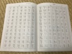 The Japan Kanji Aptitude Test: Indulgent Study, If There Is Such a Thing